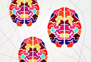 The connected human brains - Humans as a social beings